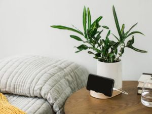 Planter Docks Could Be the Next Frontier in Adding Greenery to Your Home