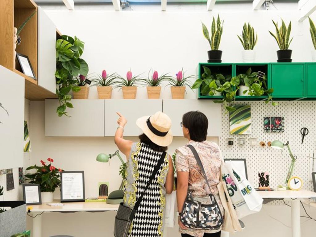 chelsea flower show 2020