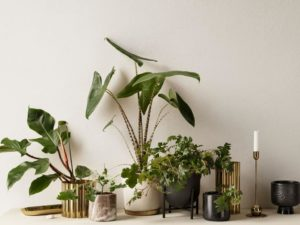 H&M Home's Latest Range Wants To Help Bring Life To Blank Spaces With Winter Green Decorations