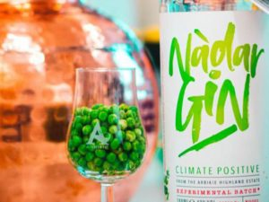 A New Gin Has Been Made Using Peas and Is An 100% Eco-Friendly Tipple