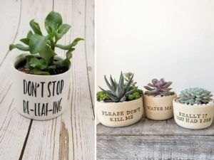 Etsy Shops Are Selling a Range Of Hilarious Succulent Planters For Hapless Plant Owners