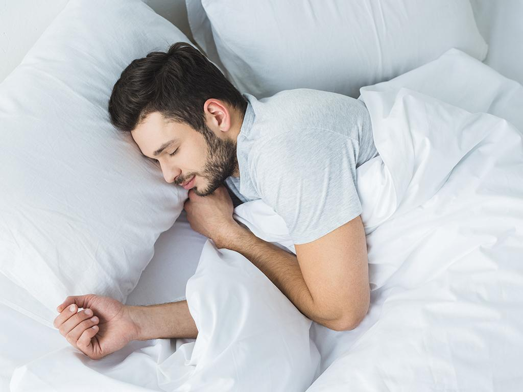 hillarys sleep professional