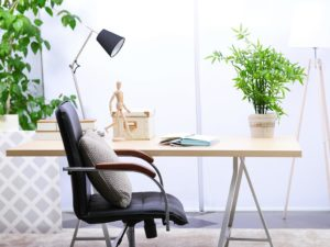 office desk plants