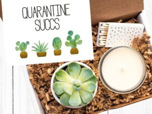 These Succulent Quarantine Kits Will Help Spread Joy During Lockdown