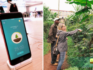 This Meditative App Helps You Stay Focused by Planting Trees in Real Life