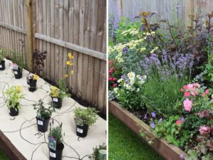 These Eco-Friendly Roll-Out Garden Borders Are Perfect for Gardening Beginners