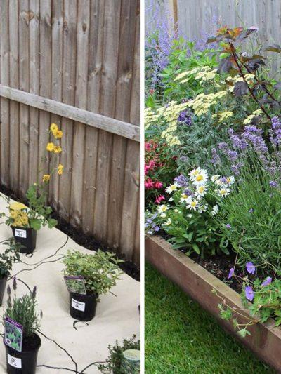 homebase garden eco border