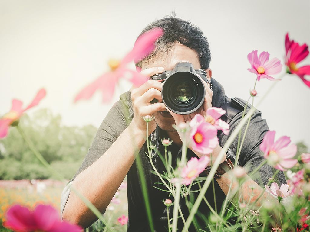 nikon free photography courses