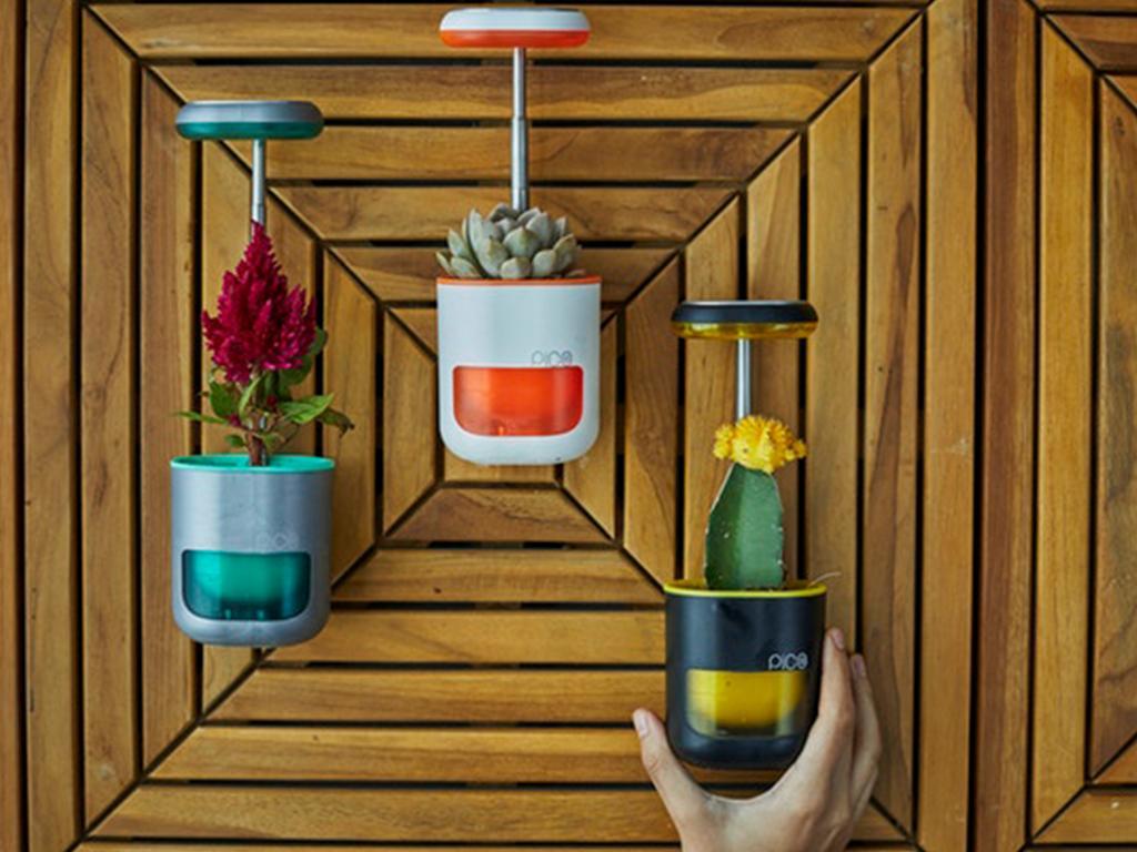 pico plant pot