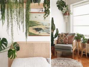 The Tribe and Us Demonstrate How Homes Can Combine Indoor Plants and Rattan to Transform Living Spaces