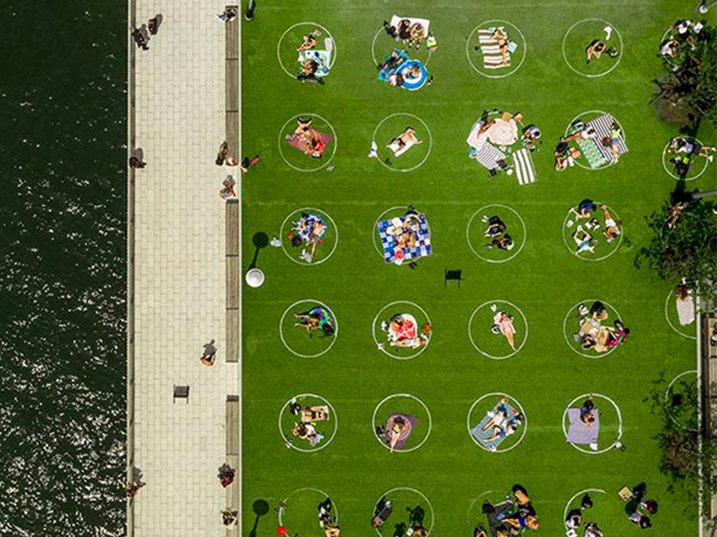 domino park painted circles
