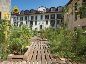 eco friendly roof garden