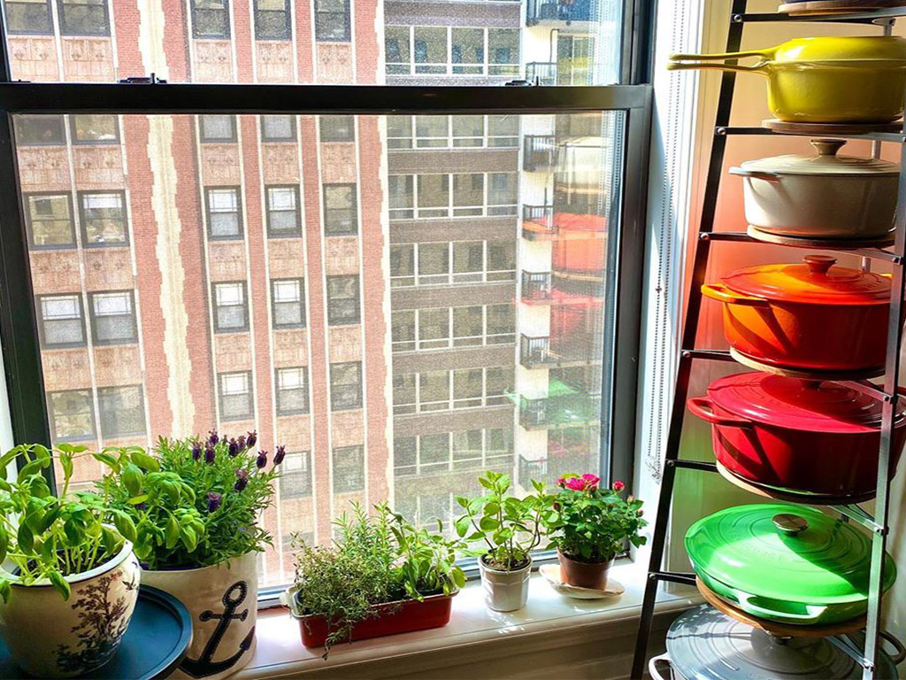 window garden ideas