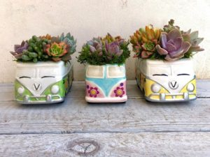 Why Not Give Your Succulents a Hippie-Inspired Upgrade