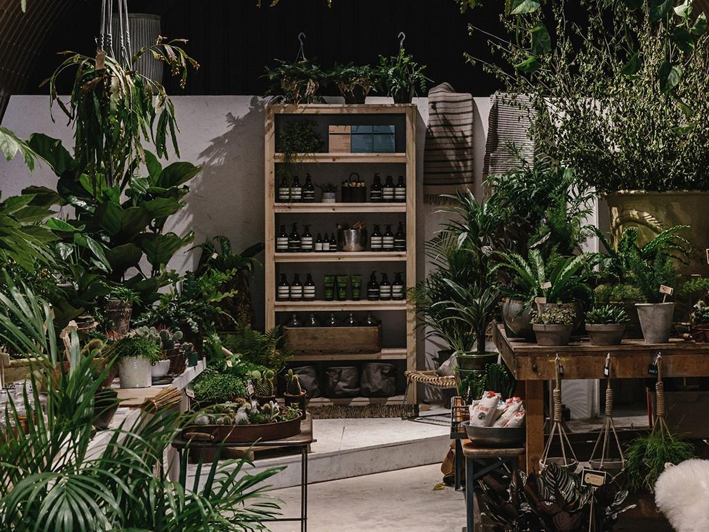 forest london plant shop