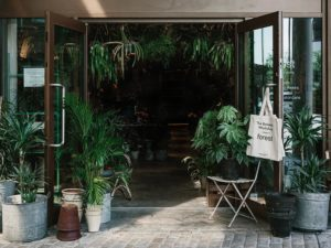 forest london plant shop
