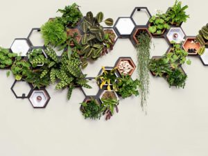 Reconnect With Nature Using These Impressive Living Wall Kits