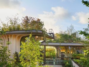 A Hospital Has Been Designed with Sustainability and Nature In Mind To Help Patients Find Calm and Soulfulness