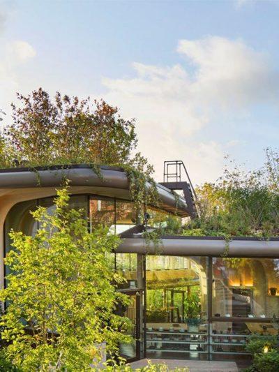 heatherwick studio maggies centre