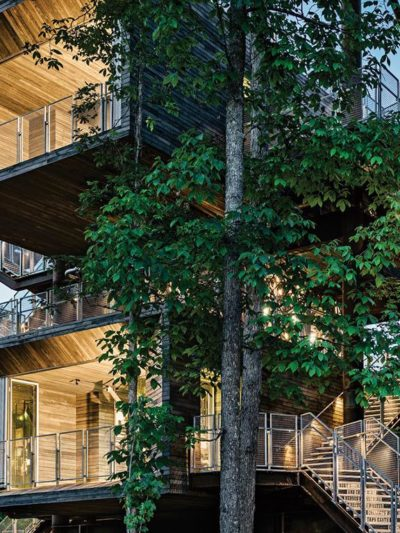 sustainable treehouse centre