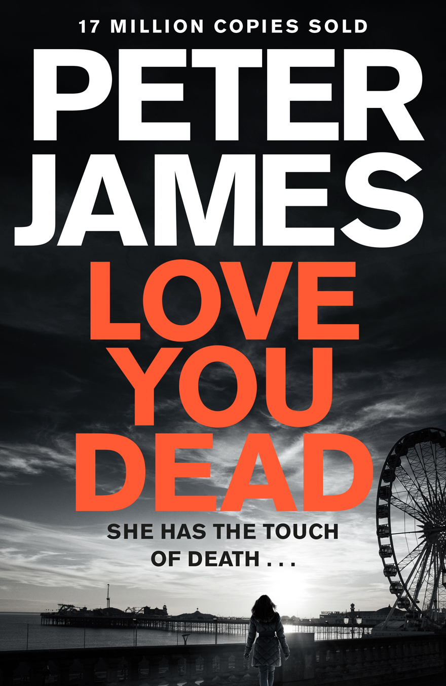 Love You Dead book cover