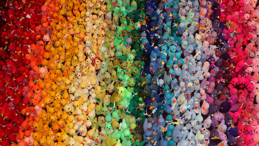 A rainbow of knitted chicks