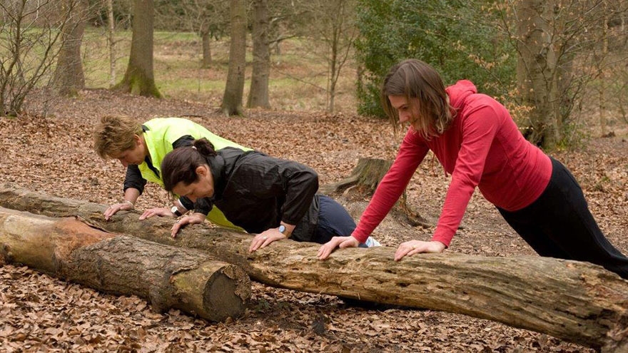 Press ups on a fallen log