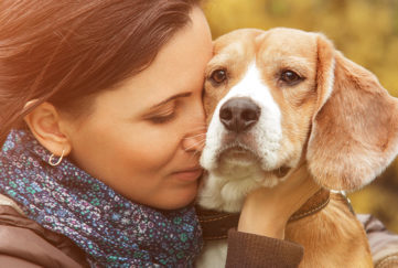 Pensive woman cuddling older beagle dog