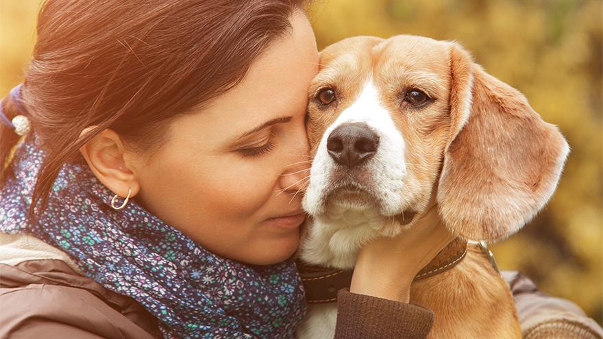Pensive woman cuddling older beagle dog