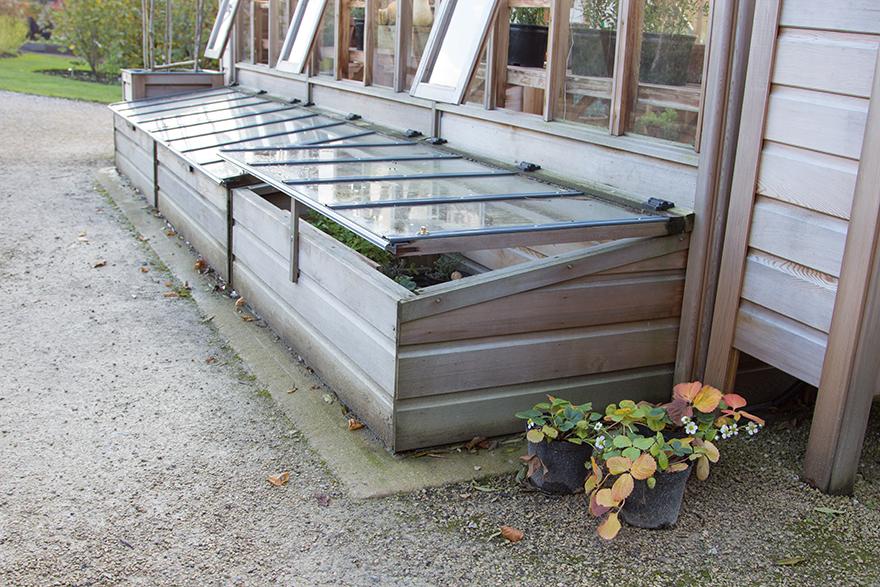 Cold frame against side of shed