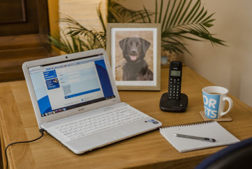 Laptop on desk showing Blue Cross website, framed photo of black labrador behind