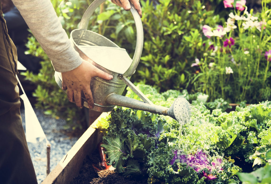Man with watering can