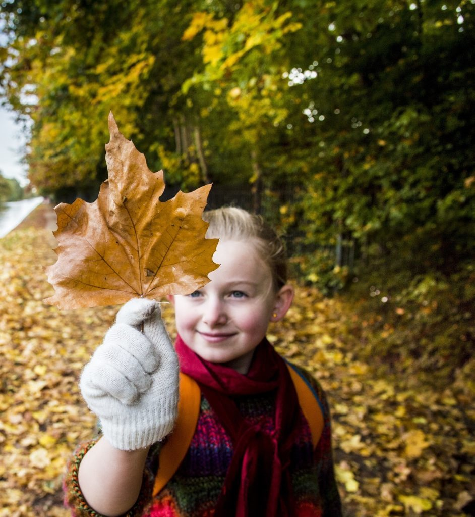 Small girl with autumn leaf