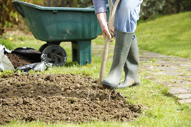 A portrait of a gardener forking a patch in the garden. Pic: Istockphoto
