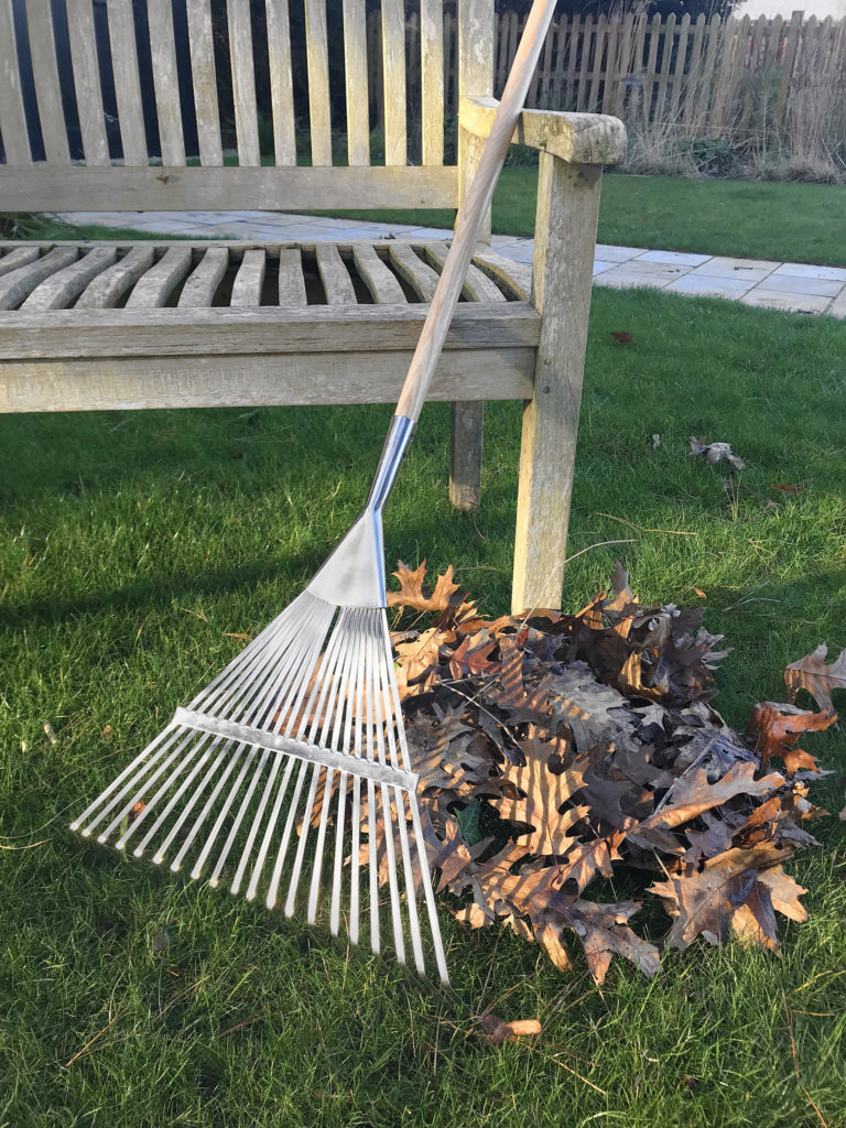 Pile of leaves and a rake beside wooden bench in garden