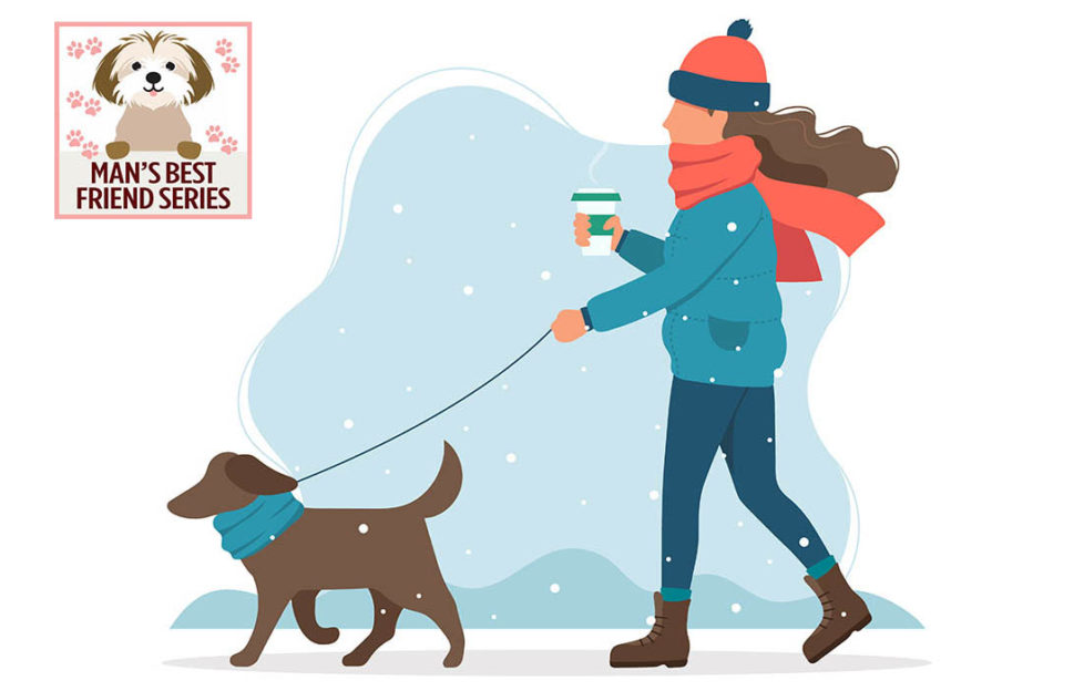 Digital cartoon of woman in hat and scarf walking dog in snow