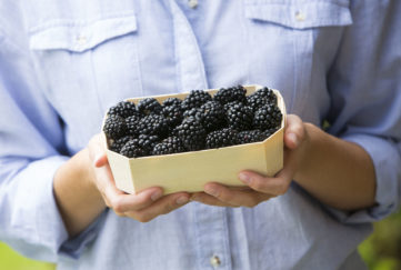 Woman Holding Tray Of Fresh Blackberries