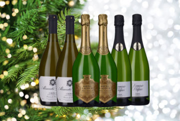 6 bottles of sparkling wine with Christmas tree in background Background pic: Istockphoto