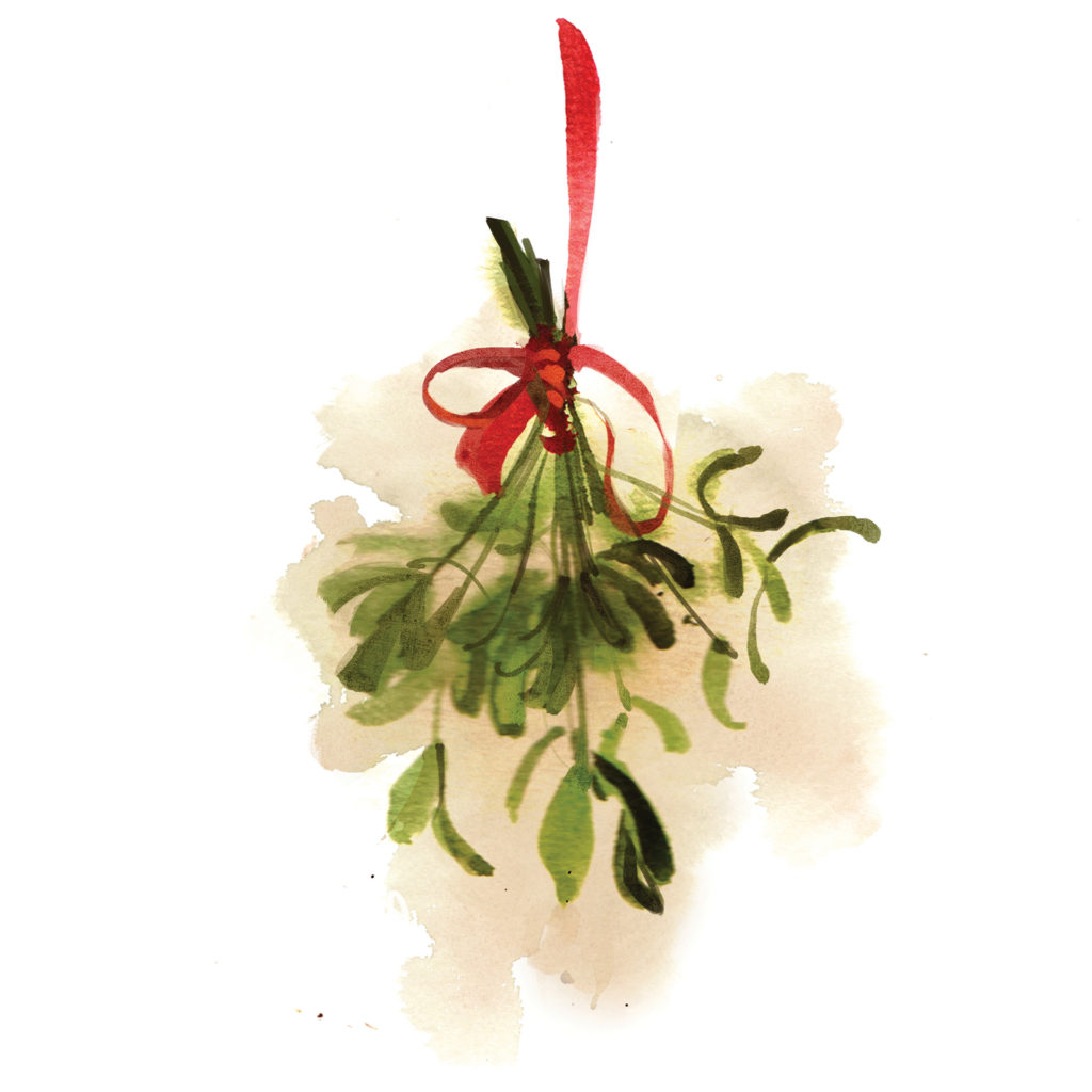 Watercolour of bunch of mistletoe, hanging from a red ribbon