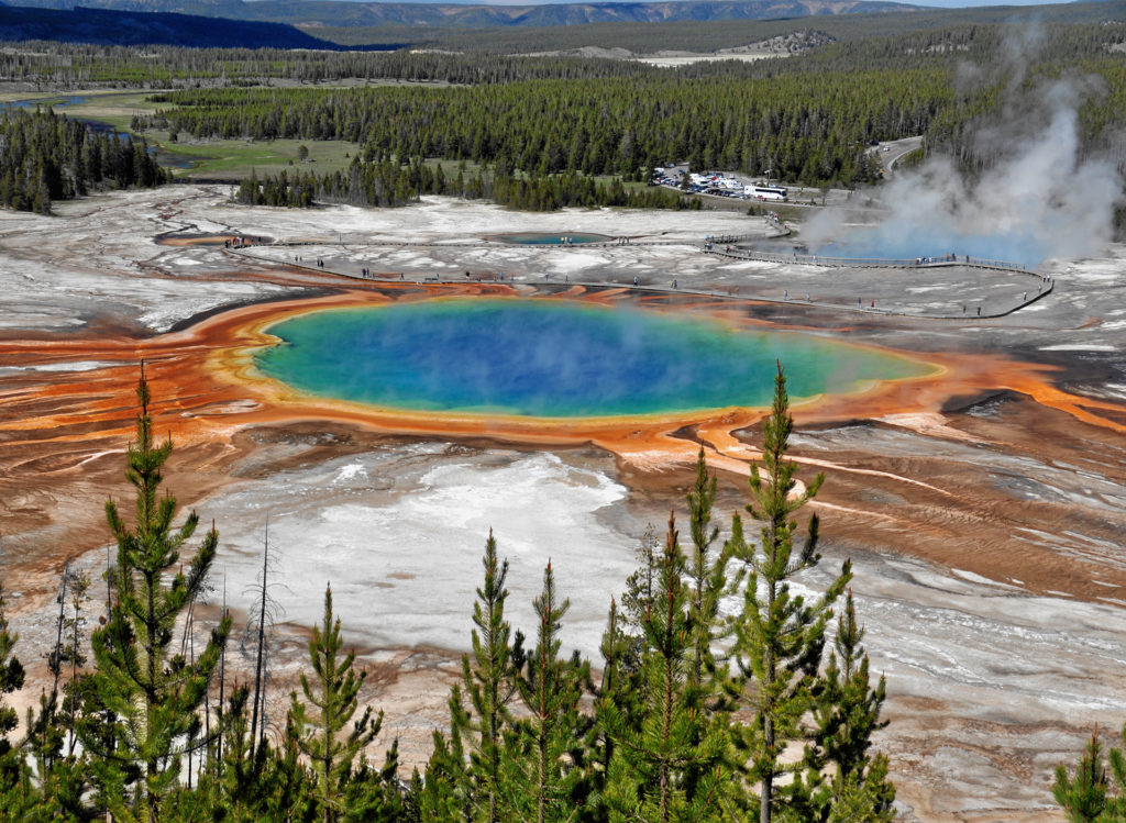 Vivid blue pool surrounded by yellow, orange and white rock, pine forest behind