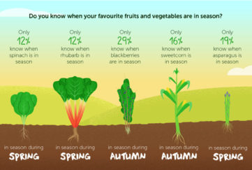 Graphic showing veg and when they are in season