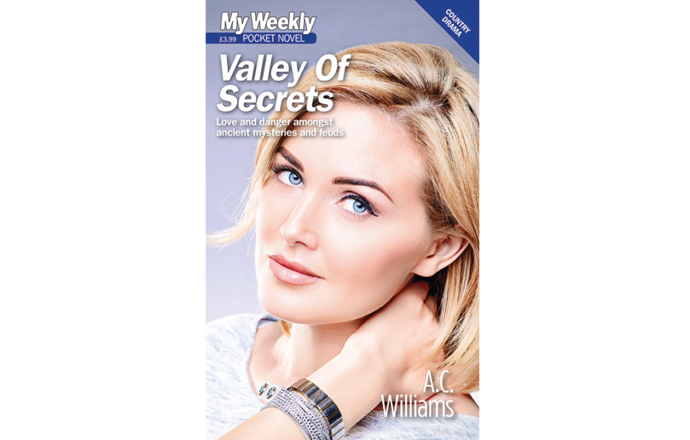 Valley Of Secrets cover