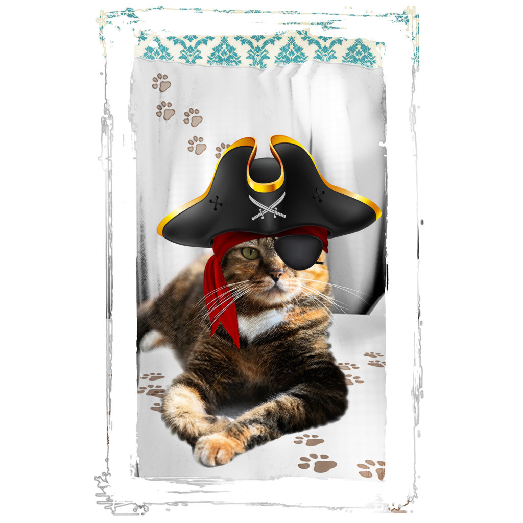 Illustration of a slim tabby cat with an eye patch and pirate hat