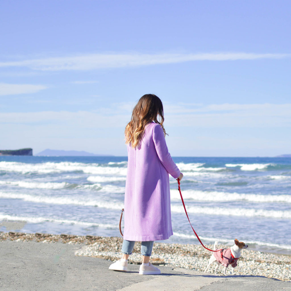 Young woman looks out to sea from promenade, chihuahua in coat on a lead, blue sky