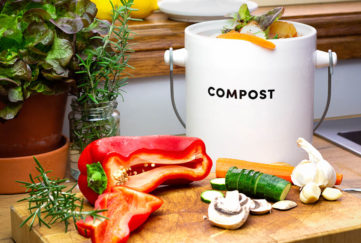 Kitchen compost caddy full of veg peelings, sliced vegetables on chopping board and fresh herbs in jar of water