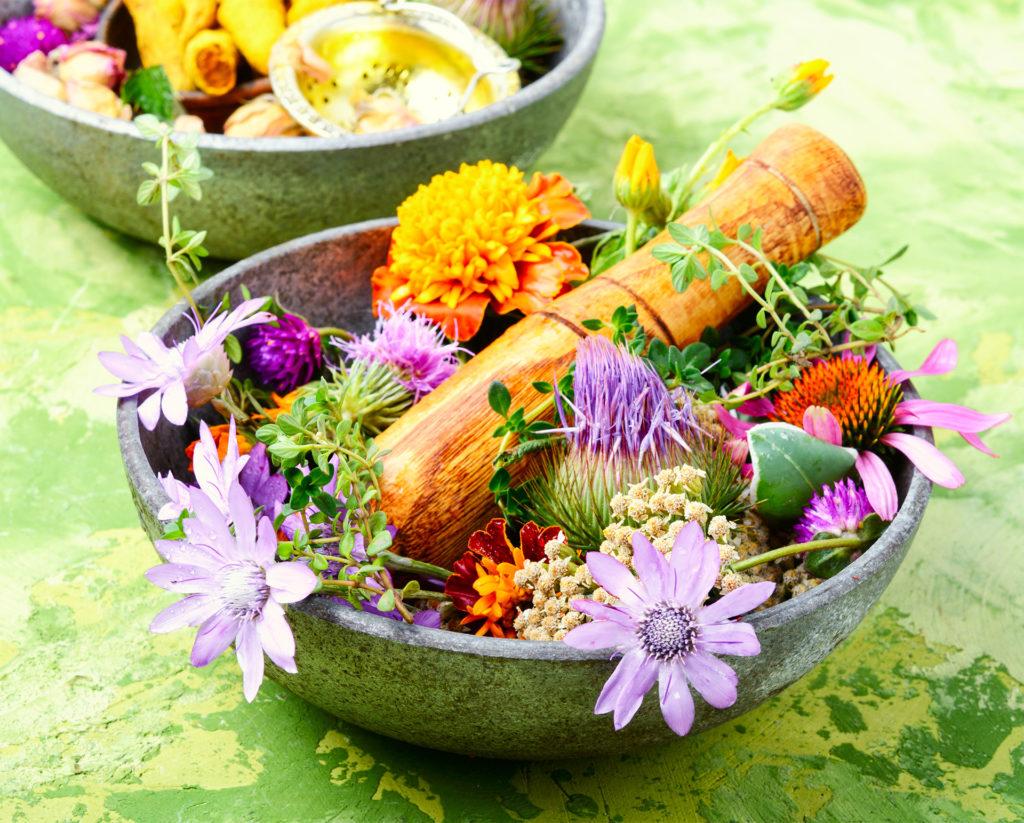 Beautiful bowl of fresh herb flowers as main image.