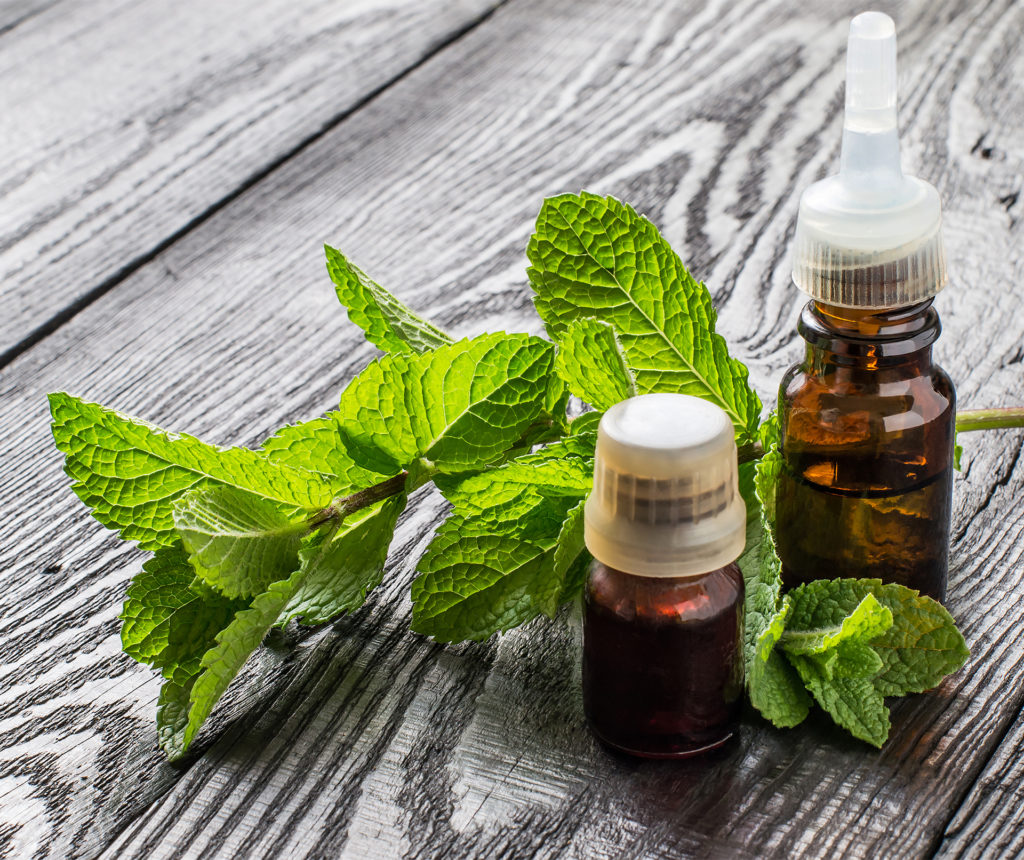 2 small brown bottles of essential oil and sprig of fresh mint lying on grey wooden boards