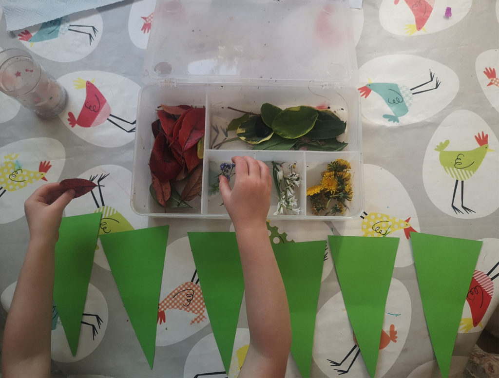Row of long triangles of green card laid out on table. Child's arm reaching across to leaves in a plastic box.