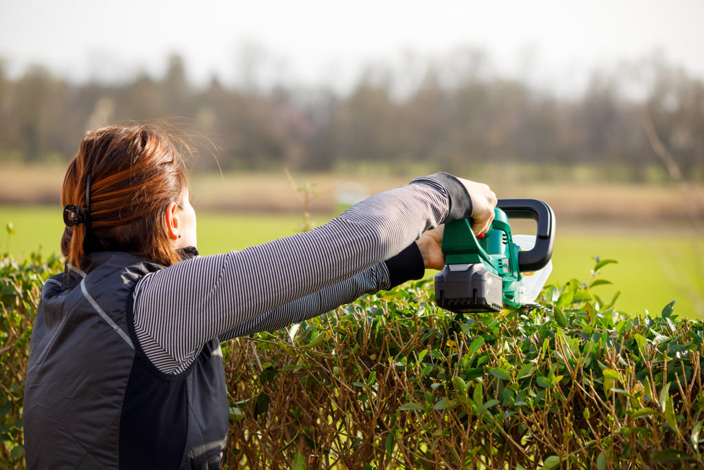Gardening Woman with hedge trimmer in summer;