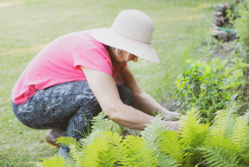 Enjoy your garden. Mature woman in sunhat crouching down to tend her garden
